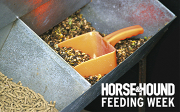 Horse-and-hound-feeding-week2