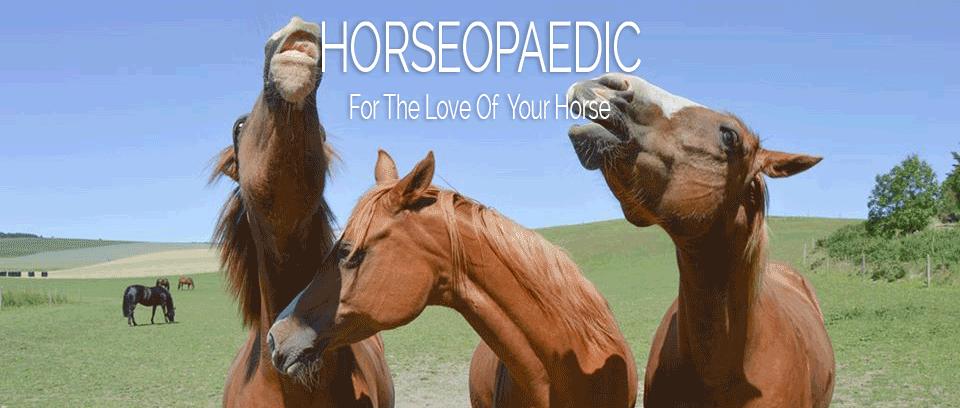 Horseopaedic